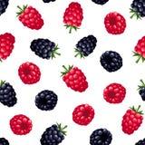 无缝的背景用莓和黑莓 也corel凹道例证向量 免版税图库摄影