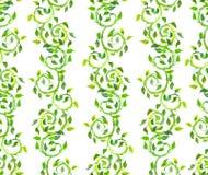 无缝的背景-与绿色纸卷和叶子的装饰品 水彩 免版税库存图片