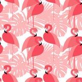 无缝的背景 在热带背景的桃红色火鸟 免版税库存图片