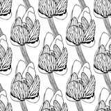 无缝的花卉样式传染媒介例证 免版税图库摄影