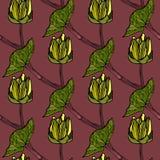 无缝的花卉样式传染媒介例证 免版税库存图片