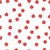 无缝的花卉样式小红色开花在白色的马鞭草属植物 免版税库存照片