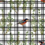 无缝的花卉样式草本和鸟 免版税库存图片