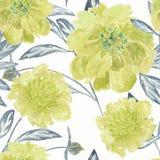 无缝的花卉样式,黄色水彩在白色背景开花 库存例证