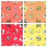 无缝的花卉样式&温暖色的背景 库存照片
