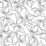 无缝的花卉模式 免版税库存照片