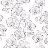 无缝的花纹花样有兰花兰花植物背景 免版税库存图片