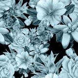 无缝的花纹花样 罗斯 花揪 多汁植物 额嘴装饰飞行例证图象其纸部分燕子水彩 图库摄影