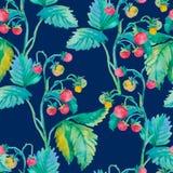 无缝的草莓 水彩 莓果 免版税库存照片