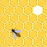 无缝的蜂蜜 皇族释放例证