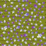无缝的蝴蝶花背景 图库摄影
