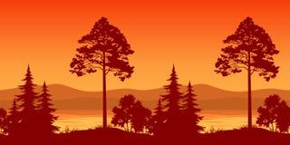 无缝的风景,在Mountain湖银行的树  免版税图库摄影