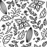 无缝的黑白色花卉样式 皇族释放例证