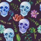 无缝的水彩样式头骨和多汁植物 库存照片