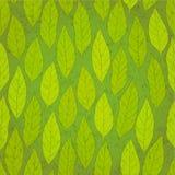 无缝的绿色叶子 免版税库存图片