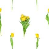 无缝的黄色郁金香束 免版税库存照片
