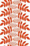 无缝的ashberry秋天样式用花楸浆果和叶子 秋天橙色花卉背景 库存照片