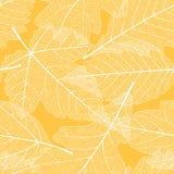 无缝秋叶的模式 库存例证