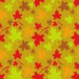 无缝秋天的模式 免版税库存照片