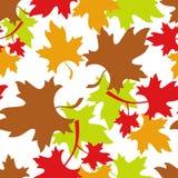 无缝秋天的模式 免版税库存图片