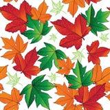 无缝秋天背景五颜六色的叶子 图库摄影