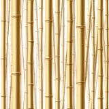 无缝竹的森林 皇族释放例证
