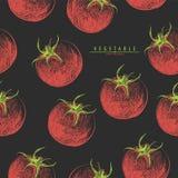 无缝红色的蕃茄 库存图片