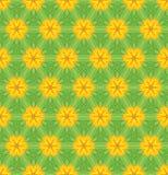 无缝背景五颜六色的花卉的模式 库存图片