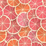 无缝背景的柑橘 库存图片