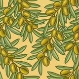 无缝背景的橄榄 库存图片