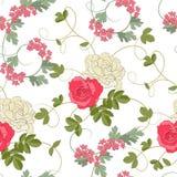 无缝背景的玫瑰 库存图片