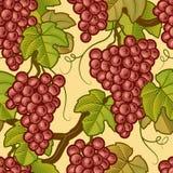 无缝背景的葡萄 免版税库存图片