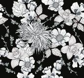 无缝背景花卉的花纹花样 向量例证