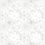 无缝花卉单色的模式 库存照片