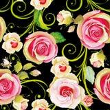 无缝花卉模式的玫瑰 免版税库存图片