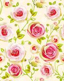 无缝花卉模式的玫瑰 库存图片
