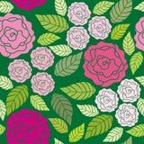 无缝花卉模式的玫瑰 向量例证