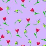 无缝花卉的模式 Â手画郁金香李子 明亮的水彩例证 图库摄影