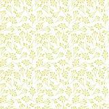 无缝花卉的模式 一部分的例证的大花收藏 免版税库存图片