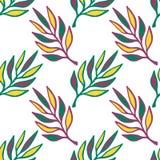 无缝花卉的模式 与叶子的手拉的纹理 绿色留给传染媒介背景无缝 图库摄影