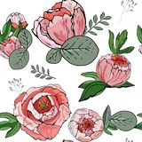 无缝花卉的模式 与牡丹的传染媒介背景无缝的花卉背景 与花的华丽墙纸在a 皇族释放例证