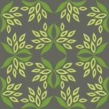 无缝花卉的模式 在灰色背景绿色叶子上 免版税库存图片