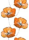 无缝花卉的模式 在白色背景的橙色鸦片花 库存图片