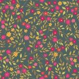 无缝花卉的模式 抽象装饰物开花背景 库存图片