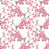 无缝花卉的模式 樱花水彩分支在白色背景的 皇族释放例证