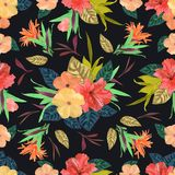 无缝花卉的模式 背景用被隔绝的五颜六色的手 库存图片