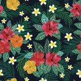 无缝花卉的模式 背景用被隔绝的五颜六色的手 库存照片