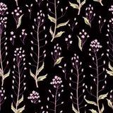 无缝花卉的模式 背景花光playnig 华丽墙纸 库存图片
