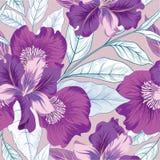无缝花卉的模式 背景花光playnig 庭院纹理 免版税图库摄影