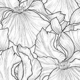 无缝花卉的模式 花虹膜蚀刻背景 Abstrac 免版税图库摄影